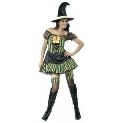 Disfraz Bruja Verde Adulta